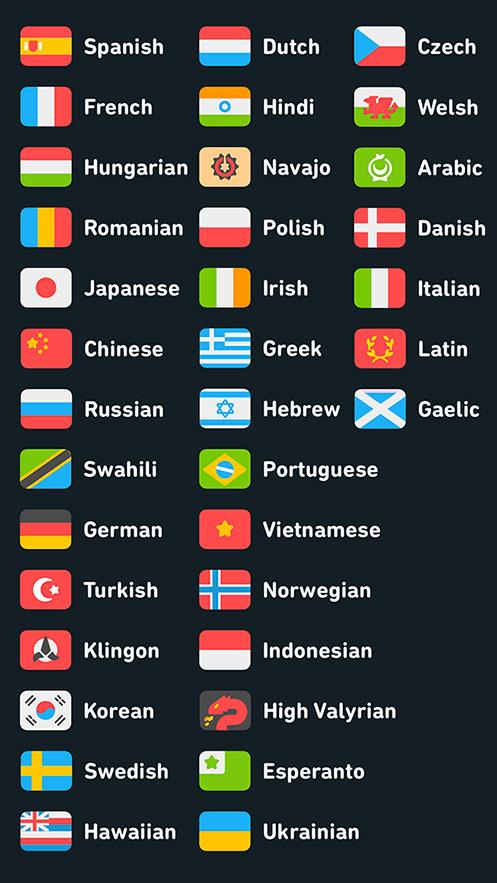 豊富な対応言語の例
