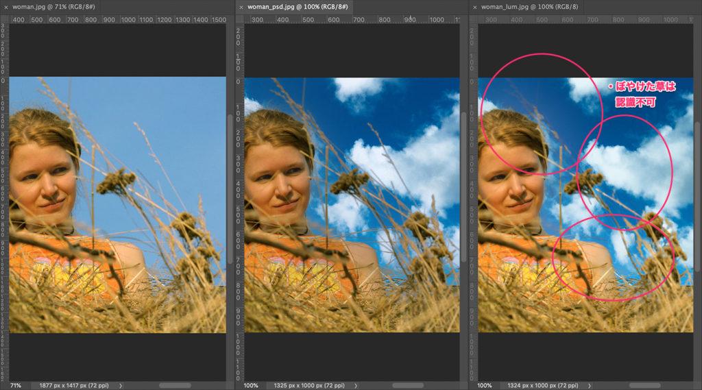 ぼやけた草もしっかり処理できたPhotoshopに軍配
